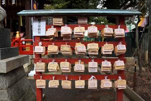 立石熊野神社拝殿脇の絵馬の写真素材 [FYI03382786]
