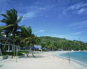 セントトーマス島のリゾートビーチの写真素材 [FYI03383296]