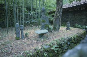 済州木石苑の写真素材 [FYI03383555]