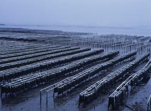 雪のかき座 瀬戸内海の写真素材 [FYI03383909]