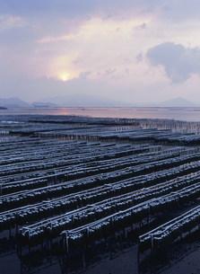 雪のかき座 瀬戸内海の写真素材 [FYI03383920]