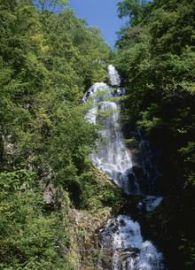 常清滝の写真素材 [FYI03383923]
