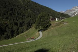 フーリからツェルマットのハイキングコースの写真素材 [FYI03383994]