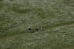 グリュッチュアルプ駅~アルメントフーベルのハイキングコースの写真素材 [FYI03384008]