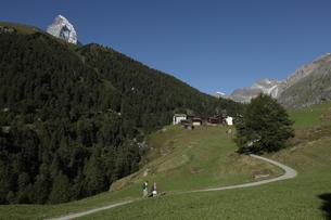 フーリからツェルマットのハイキングコースの写真素材 [FYI03384016]