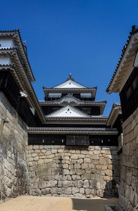 松山城紫竹門東塀より天守閣を望むの写真素材 [FYI03384831]