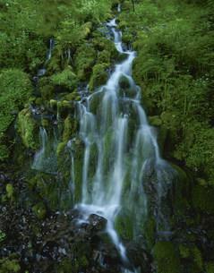 湯ノ丸高原五郎の滝の写真素材 [FYI03384893]