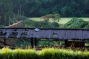 古びた稲架小屋のトタン屋根の写真素材 [FYI03385114]