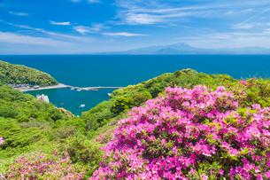 ツツジ咲く関の五本松公園から眺める大山の写真素材 [FYI03385174]