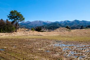 棚田のカンナ残丘と船通山の写真素材 [FYI03385190]