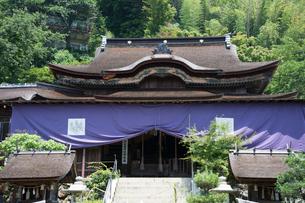 竹生島神社本殿の写真素材 [FYI03385286]