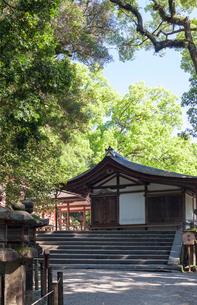 新緑の春日大社 神楽殿の写真素材 [FYI03385287]