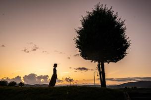 夕日の写真素材 [FYI03385543]