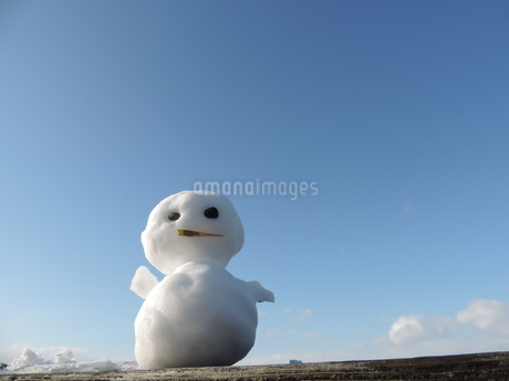 雪だるまの写真素材 [FYI03385654]