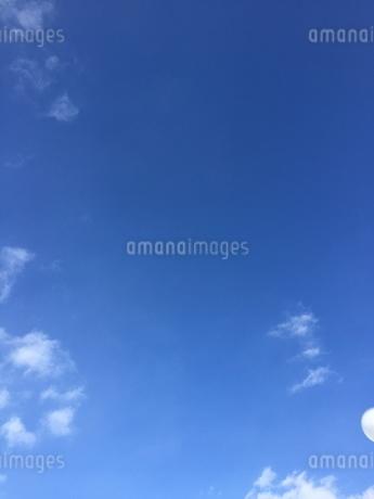 空の写真素材 [FYI03385667]