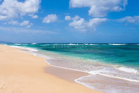 ハワイの波と砂浜の写真素材 [FYI03386141]