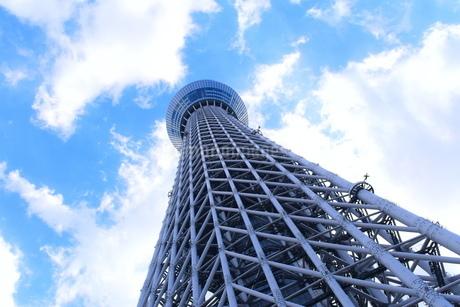 東京スカイツリーの写真素材 [FYI03386166]