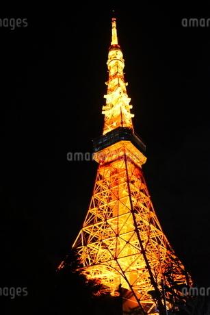 東京タワーの写真素材 [FYI03386170]