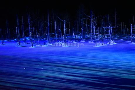 青い池の写真素材 [FYI03386185]
