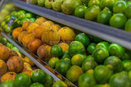 果物の写真素材 [FYI03386307]