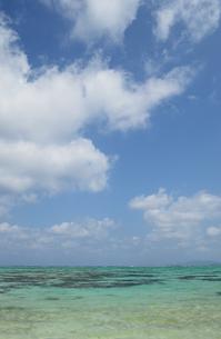 青い空とエメラルドグリーンの遠浅の海の写真素材 [FYI03386369]