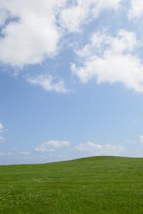 空と緑の草原の写真素材 [FYI03386395]