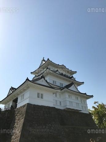 小田原城の写真素材 [FYI03386406]