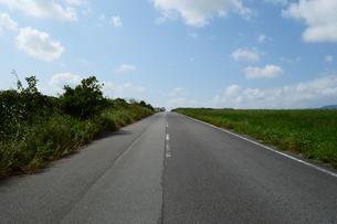 草原の横に伸びる直線の一本道の写真素材 [FYI03386565]