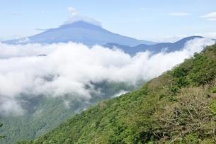大室山より夏の富士山展望の写真素材 [FYI03386568]