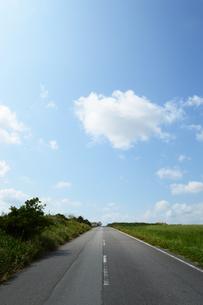 草原の横に伸びる直線の一本道の写真素材 [FYI03386580]
