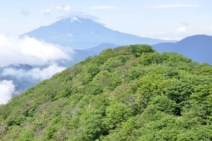 夏の甲相国境尾根と富士山の写真素材 [FYI03386596]