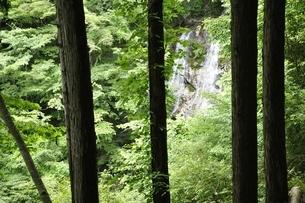 白石の滝の写真素材 [FYI03386642]