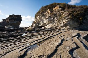 シガラミ磯の堆積地層(和歌山県白浜町)の写真素材 [FYI03386671]