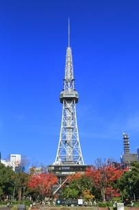 100メートル道路とテレビ塔の写真素材 [FYI03386814]