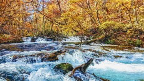 奥入瀬渓流の清流と紅葉の写真素材 [FYI03386914]