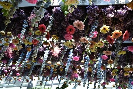 シンガポールのガーデンズバイザベイにあった天井から植えられたカラフルなお花の写真素材 [FYI03387017]
