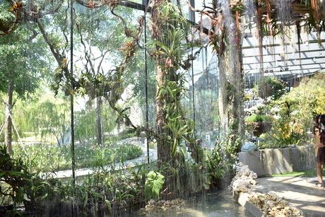 ガーデンズバイザベイの室内で流れる水の写真素材 [FYI03387024]
