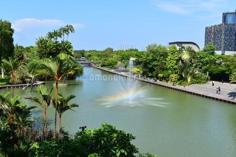 シンガポールのガーデンズバイザベイで出ていた虹の写真素材 [FYI03387027]