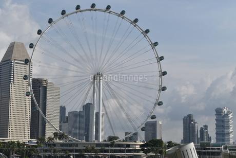シンガポールフライヤーの写真素材 [FYI03387128]