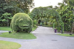 木で作られた動物の写真素材 [FYI03387138]