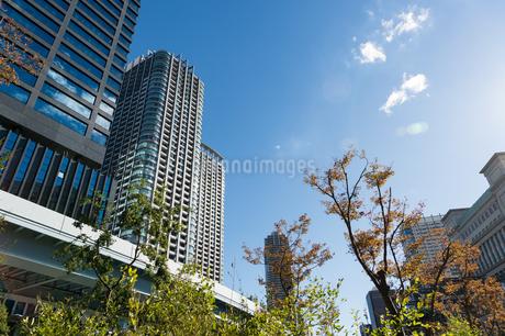 東京の風景の写真素材 [FYI03387881]