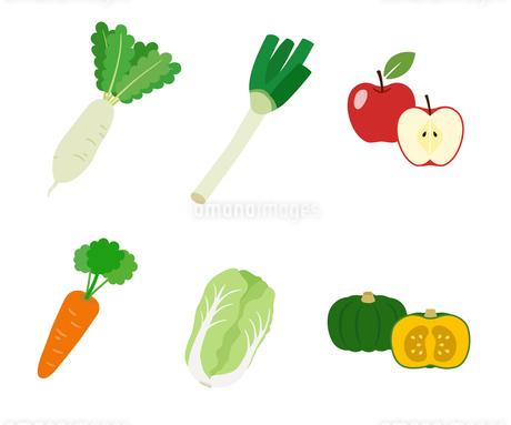 秋冬の野菜果物のイラスト素材 [FYI03388052]