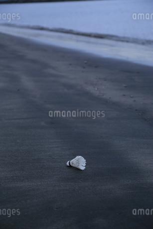 静寂の写真素材 [FYI03388424]
