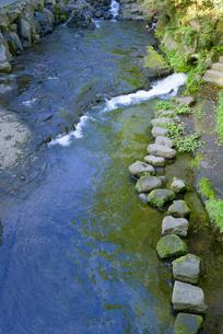 阿蘇の名水百選 白川水源の写真素材 [FYI03389251]