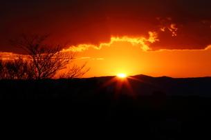 夕陽の写真素材 [FYI03389270]