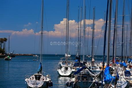 港のヨットの写真素材 [FYI03389284]