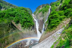 新緑の称名滝とハンノキ滝と虹の写真素材 [FYI03389486]