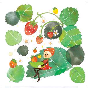イチゴの妖精のイラスト素材 [FYI03389596]