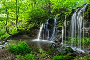 猿壷の滝(さるぼのたき)の写真素材 [FYI03389617]
