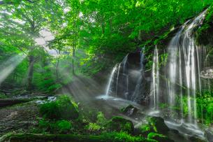 光芒の猿壷の滝(さるぼのたき)の写真素材 [FYI03389618]